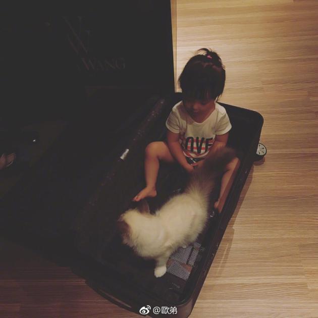 欧弟欲将女儿放行李箱带走 宝贝肉嘟嘟小腿惹人爱