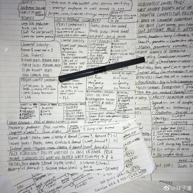 林子濠晒超复杂英文笔记 林依轮:怎么全看不懂