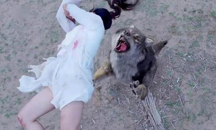 《楚乔传》中的特效狼