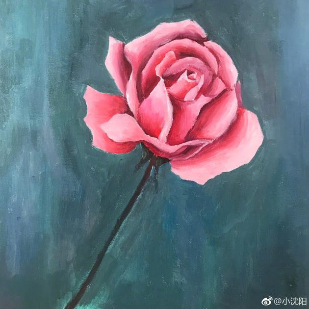 小沈阳结婚纪念日在家陪妻女 暖心女儿画玫瑰礼物