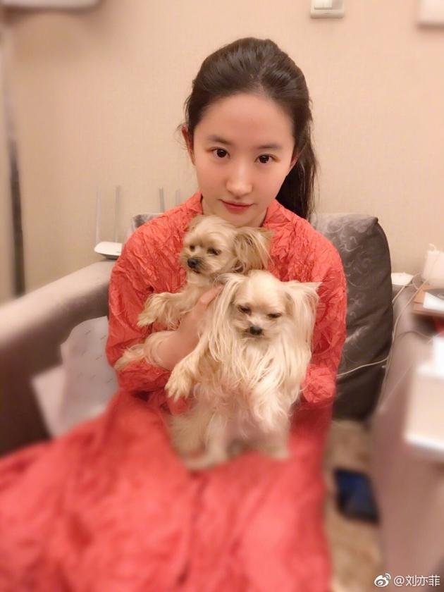 刘亦菲素颜与爱宠花式亲密合照 网友:想做那只狗