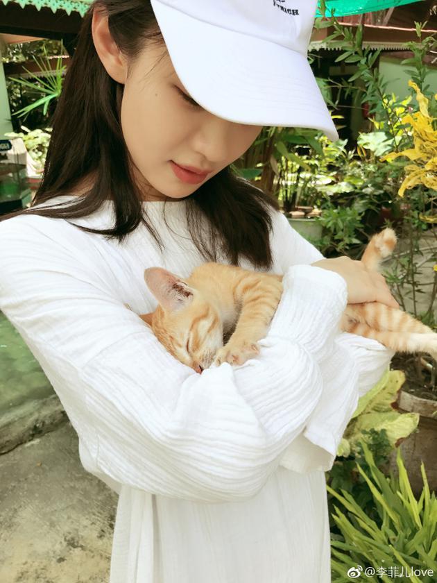 李菲儿怀抱小橘猫想带走 网友:好想成为那只喵