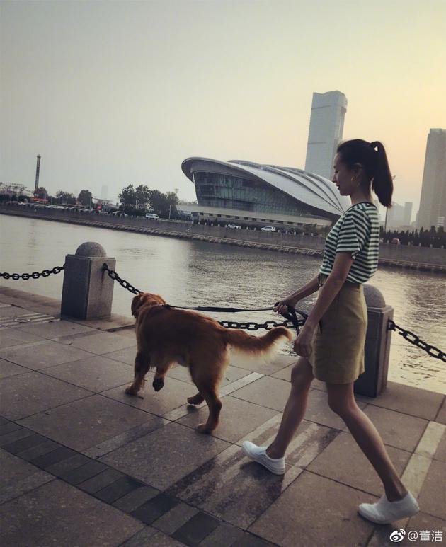 回归微博的董洁首晒自拍照 牵狗漫步身材如少女