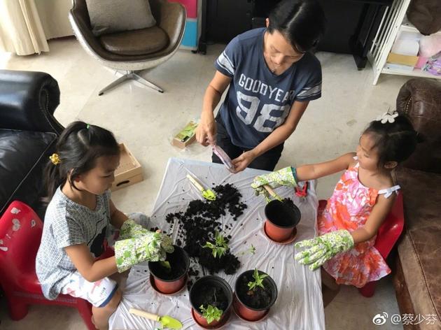 从小学环保!蔡少芬周末带女儿家中种菜