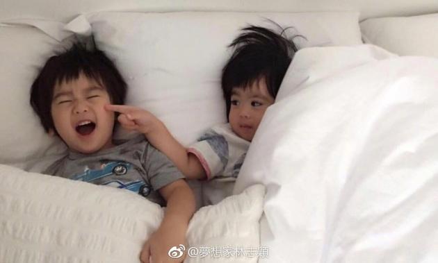 林志颖双胞胎儿子床上互动  互搓脸调皮可爱