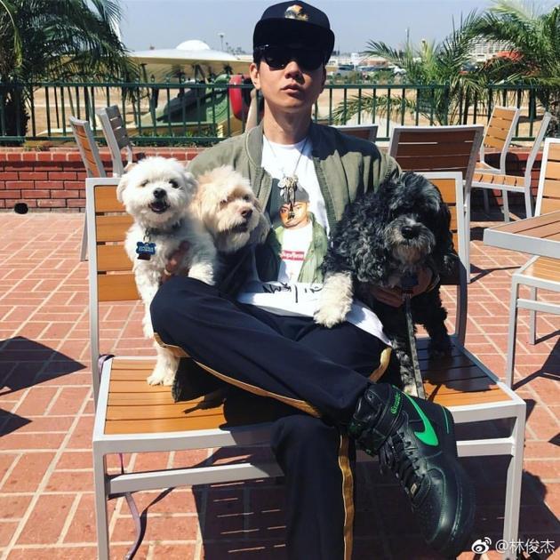 林俊杰爱宠无敌左拥右抱三只狗狗 网友:人不如狗