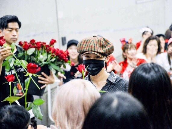 GD送歌迷玫瑰姿势似求婚 粉丝看了超心动
