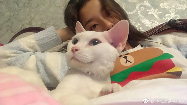 宋祖儿和爱猫合影 甜美可爱被赞小仙女