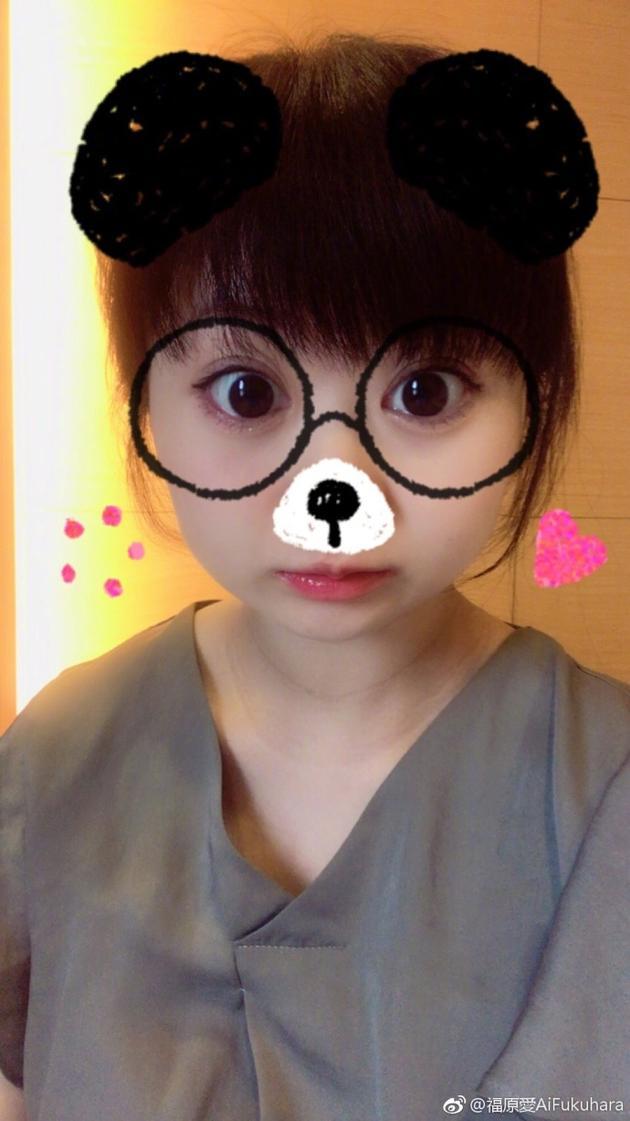 福原爱与老公讨论熊猫是猫吗 网友:谁可爱听谁的