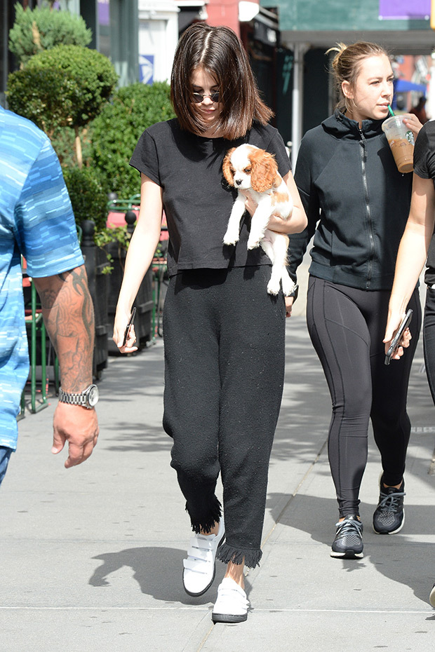 赛琳娜搂小狗孤立逛街