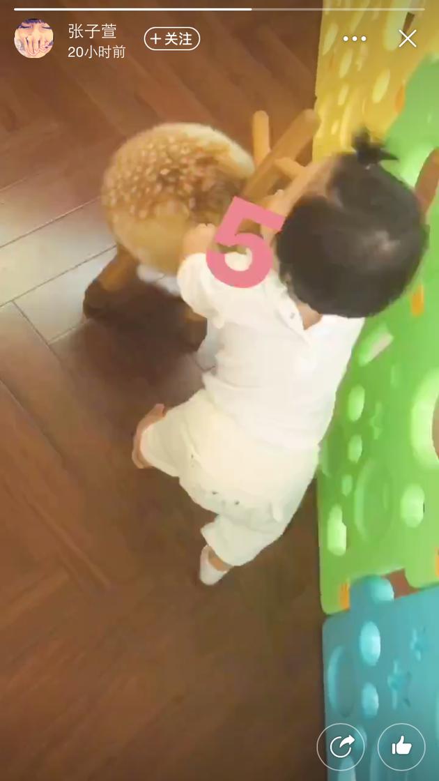 张子萱陈赫女儿