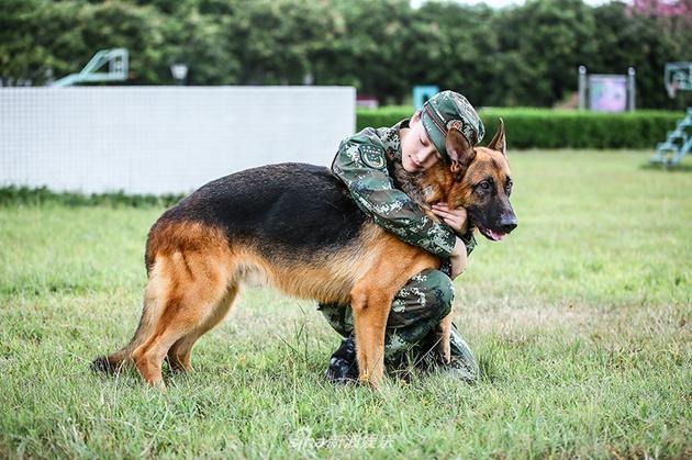 张馨予《奇犬》训狗惨被咬 虽受伤仍感谢狗狗保护