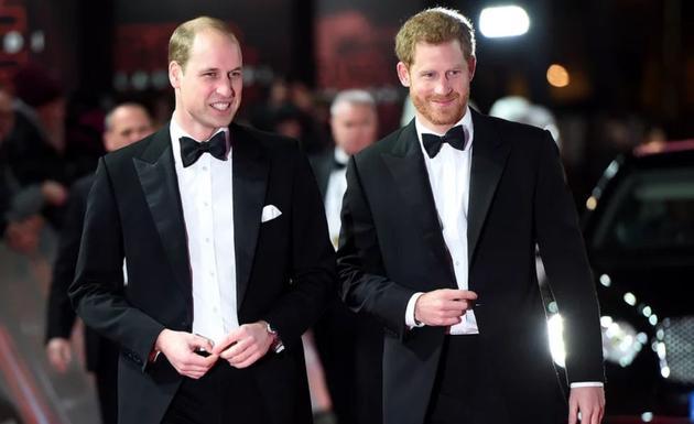 哈里王子、威廉王子