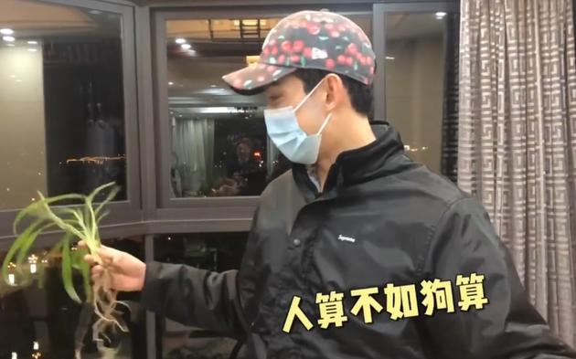 吴磊攥着被狗狗打翻的绿植