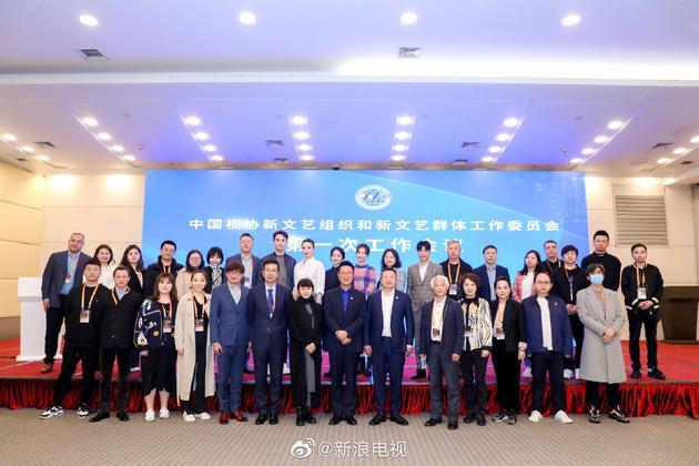 首批中视协双新委员会名单公布 王凯谭松韵等在列