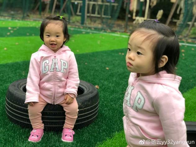 杨云双胞胎女儿