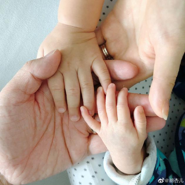 胡杏儿晒一家四口牵手照宣布二胎产子:欢迎你