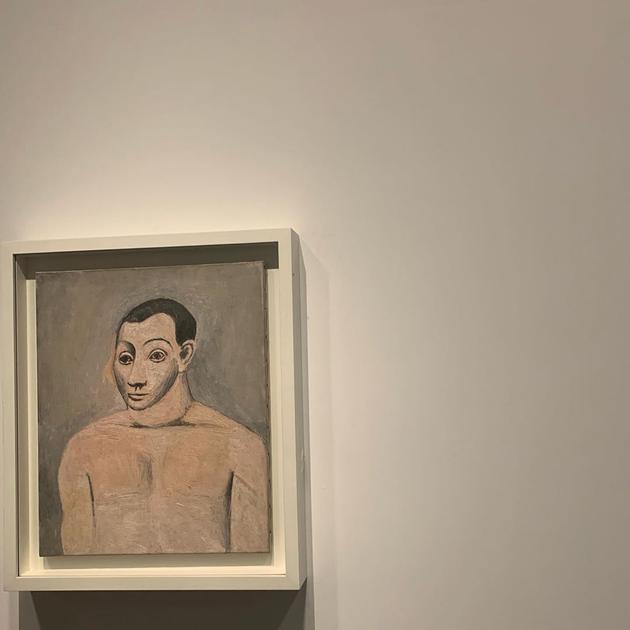 毕加索画作