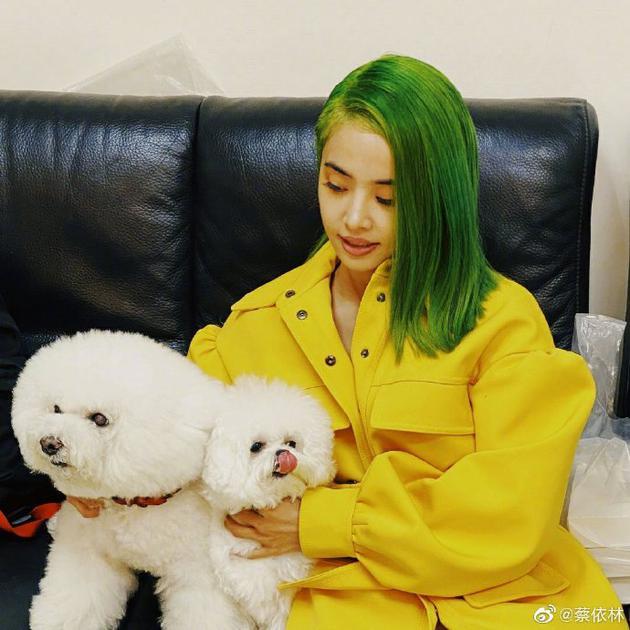 蔡依林与爱宠温柔互动 绿发黄衣出镜炫酷又大胆
