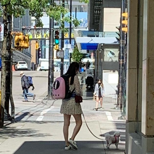 网友温哥华街头偶遇王祖贤 穿短裙遛狗很靓丽