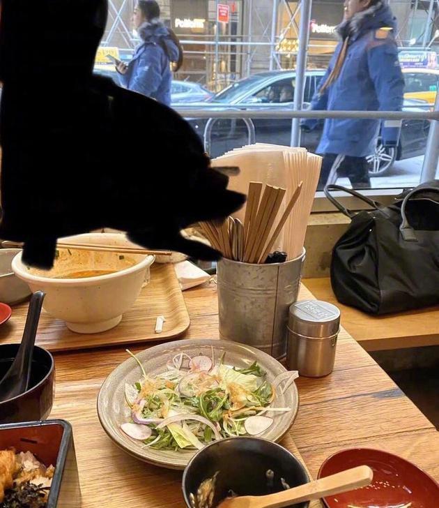 网友纽约偶遇尹正与蒋梦婕