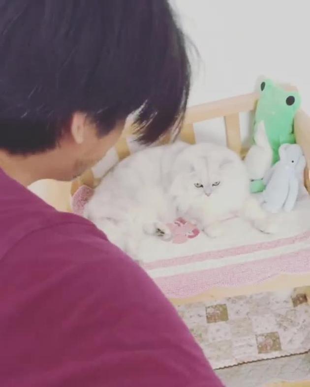 冯德伦对爱猫弹唱