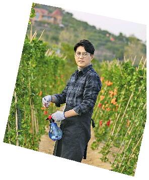 从靳东到王丽坤王力可 农村题材