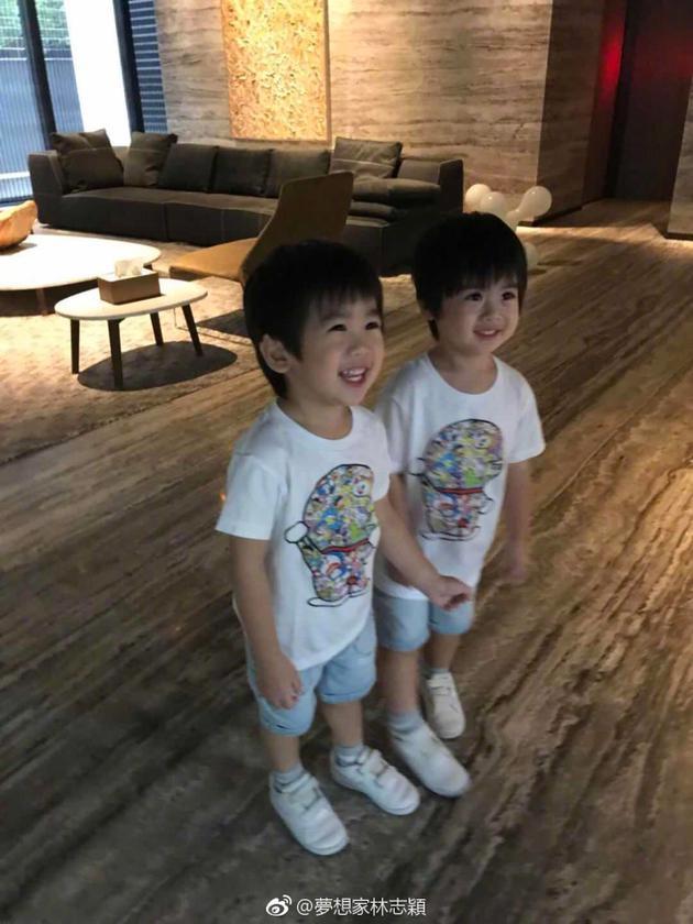 林志颖双胞胎