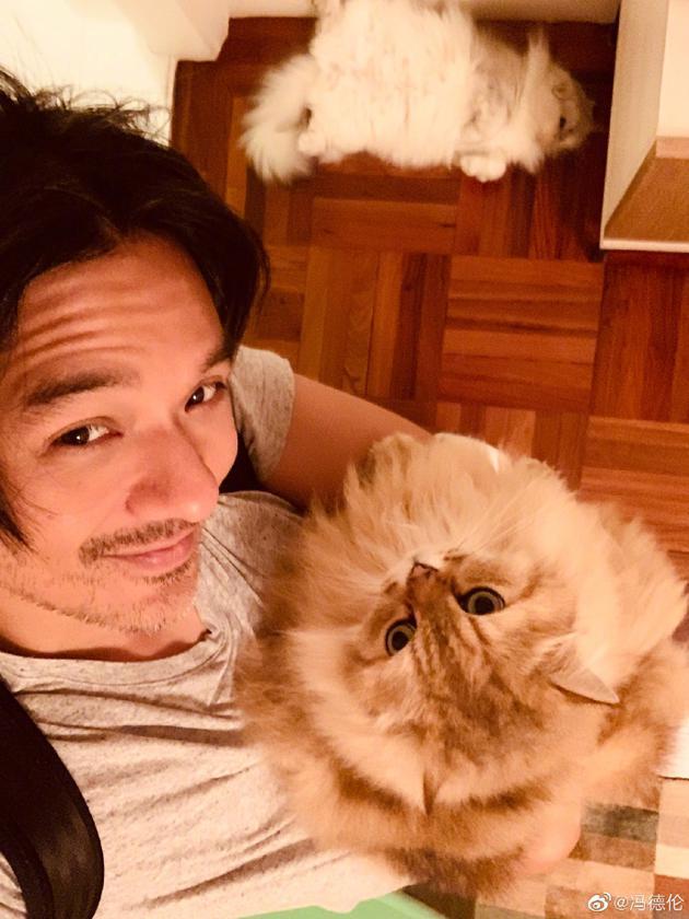 馮德倫和貓