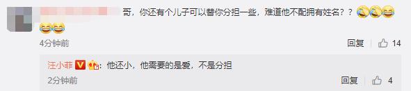汪小菲迴應網友