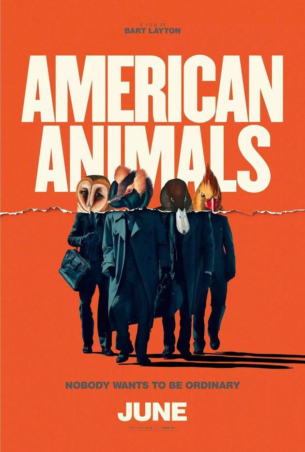 《美国动物》