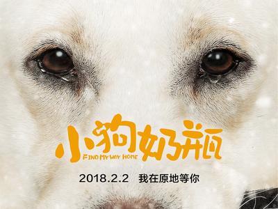 视频:《小狗奶瓶》定档2月2日 先导预告曝光