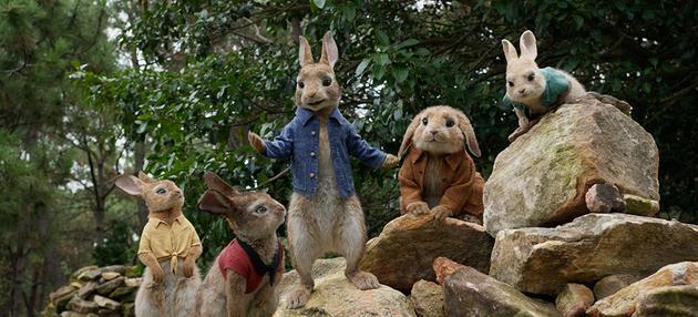 《比得兔》与小伙伴