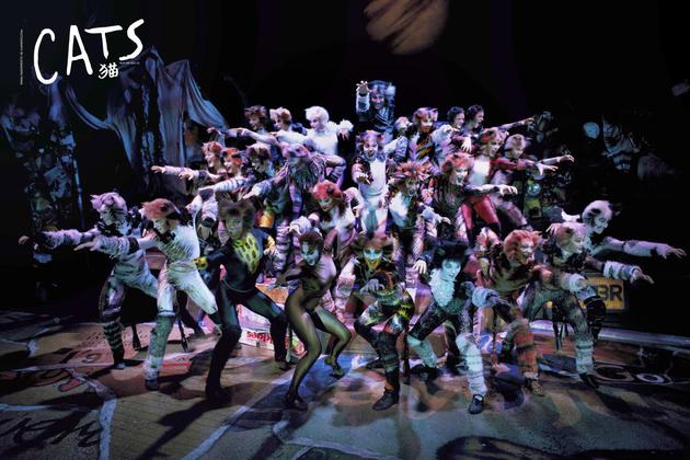 原版音乐剧《猫》将再来华明年开启北京