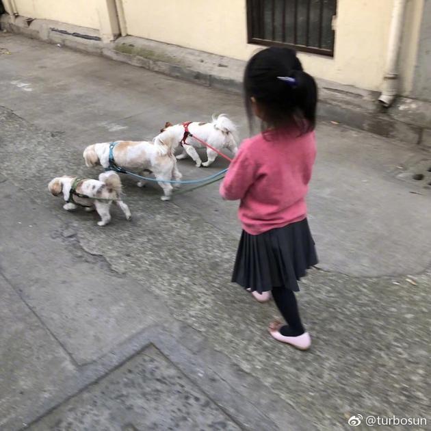 孙俪女儿牵狗照背影超萌 还因为狗狗和哥哥吃醋