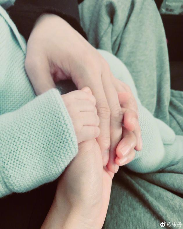 朱丹周一围牵宝宝的手
