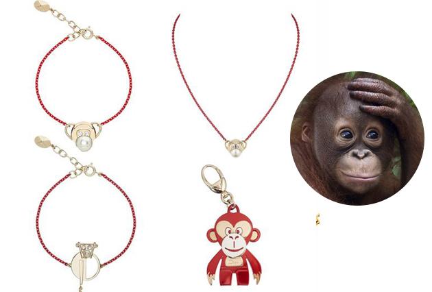 猴子和猩猩还是有区别的