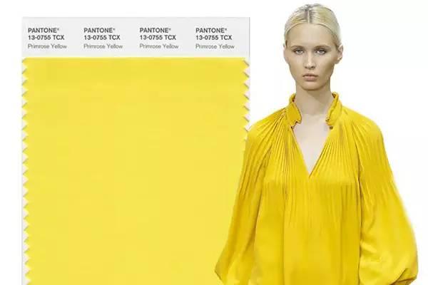 樱草黄 PANTONE 13-0755 Primrose Yellow