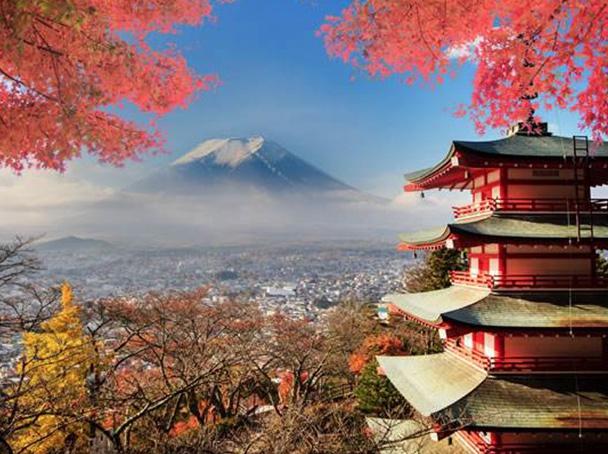 日本人气经典路线到底该怎么玩?