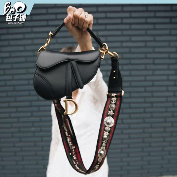 Dior Saddle包包2