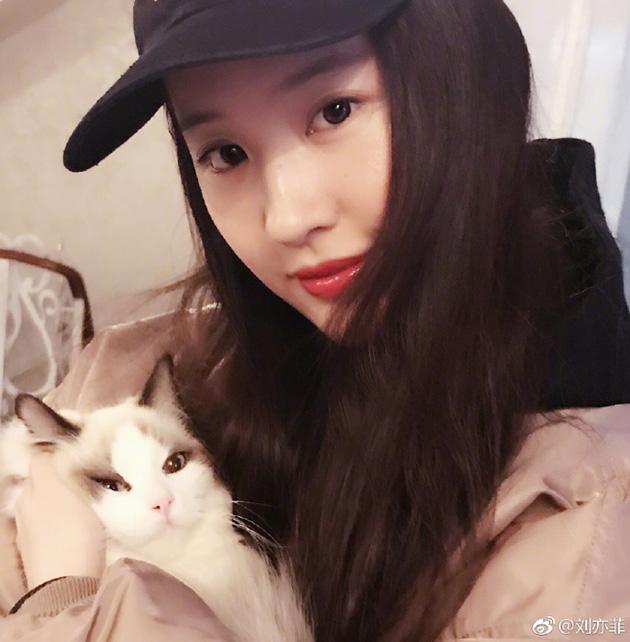 刘亦菲撸猫的日常