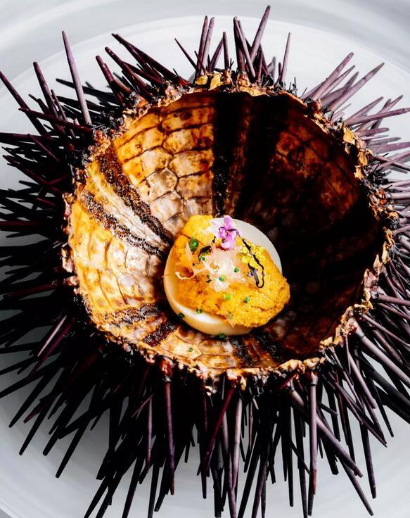海胆搭配无蛋卡仕达酱、日式高汤、鳗鱼酱汁和手指柠檬