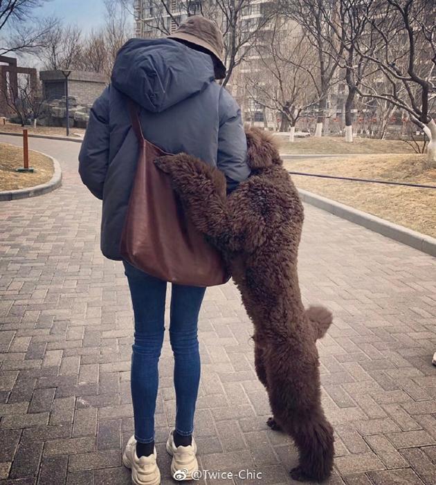 倪妮超细腿