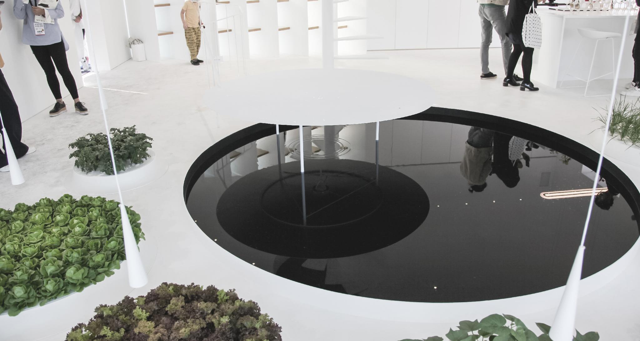 杨明洁设计作品:《绿舍》 来自探索家—未来生活大展