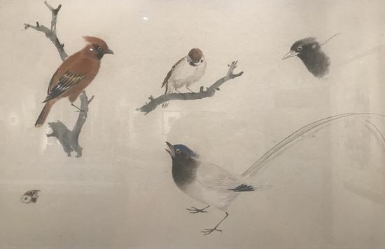 乔木,《花鸟课徒稿》,1961-1962年