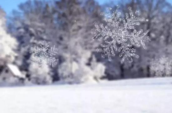 去看雪花飘落的温暖夜里的一盏明灯。