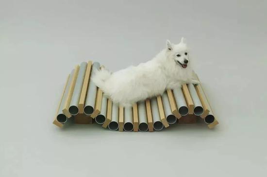 内藤广设计的狗狗消暑装置