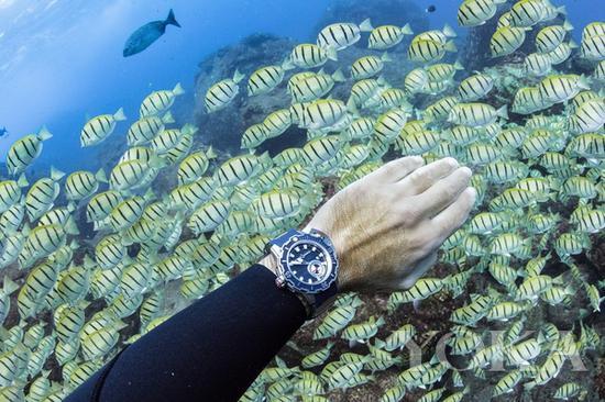 单品推荐:雅典表Deep Dive千米潜水表 价格店询(图片来源于品牌)