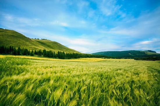 它就是中国的瑞士——阿尔山。