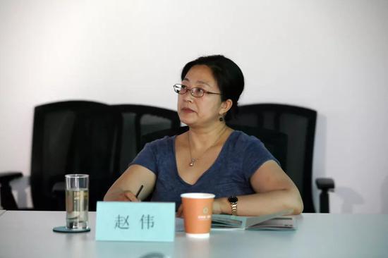 中央美术学院人文学院教授赵伟女士